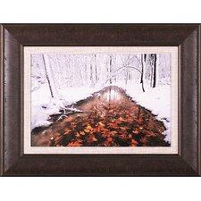 Autumn Passing by Jim Brandenburg Framed Photographic Print