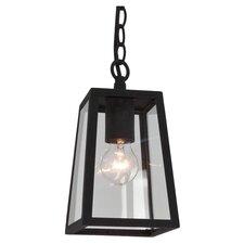 Calvi 1 Light Hanging Lantern