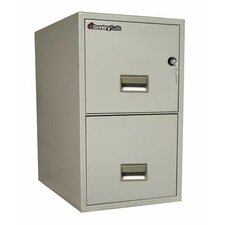 SentrySafe 2-Drawer  Letter File