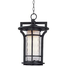 Oakville EE 1 Light Outdoor Hanging Lantern