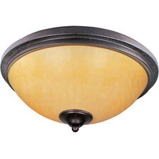 Luminous 2 Light Flush Mount