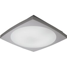 Anglex 2 Light Flush Mount