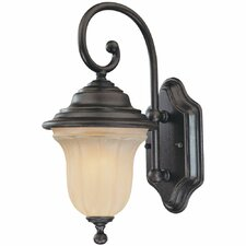 <strong>Dolan Designs</strong> Helena 1 Light Wall Lantern