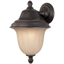 <strong>Dolan Designs</strong> Helena 1 Light Outdoor Wall Lantern
