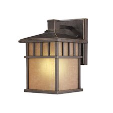<strong>Dolan Designs</strong> Barton 1 Light Outdoor Wall Lantern
