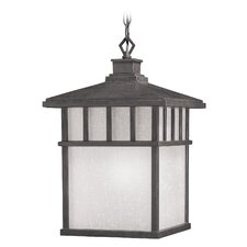 Barton 1 Light Outdoor Lantern