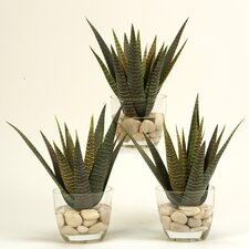 <strong>D & W Silks</strong> Agave Floor Plant in Pot (Set of 3)