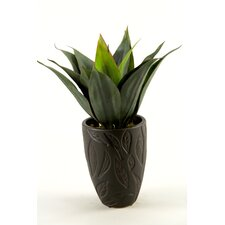 Agave Floor Plant in Decorative Vase