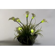 Lighted Calla Lilies in Square Planter