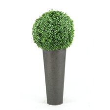 <strong>D & W Silks</strong> Boxwood Ball Round Topiary in Planter