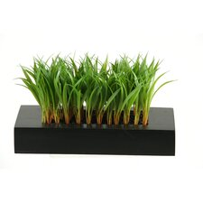 Wild Grass Wooden Planter