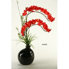Cymbidium Orchids in Ceramic Bottle Vase