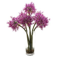 Starfire Alliums in Hexagon Glass Vase
