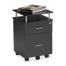 Vision 2-Drawer Mobile Vertical File
