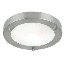 1 Light Flush Ceiling Light II