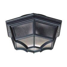 1 Light Ceiling Semi-Flush Light