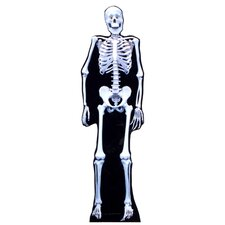 Halloween Skeleton Cardboard Standup