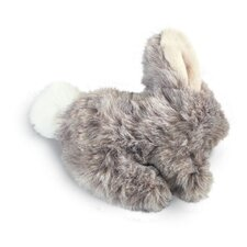 Wild Rabbit Dog Toy