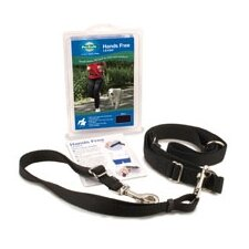 Pet Safe Hands Free Dog Leash