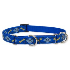 Dapper Dog Adjustable Combo Collar