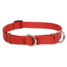 "Solid Color 3/4"" Adjustable Medium Dog Combo Collar"