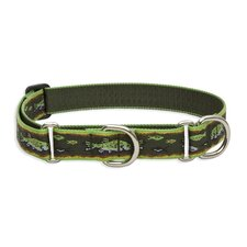 "Brook Trout 1"" Adjustable Large Dog Combo Collar"