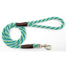Twist Snap Leash in Seafoam