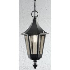 Boulevard 1 Light Hanging Lantern