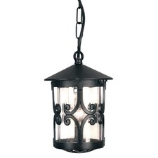 Hereford 1 Light Hanging Lantern