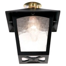 York 1 Light Flush Porch Lantern