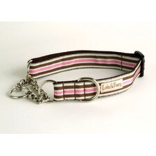 Kona Stripe Martingale Dog Collar