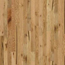 "Golden Opportunity 3-1/4"" Solid Red Oak Flooring in Rustic Natural"