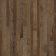 "Monte Rosa 3-1/4"" Solid Hickory Flooring in Bison"
