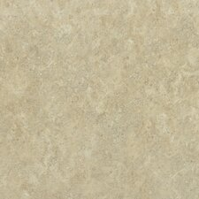 "<strong>Shaw Floors</strong> Palmetto 17"" x 17"" Floor Tile in Beige"
