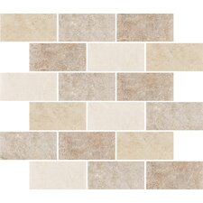 "Padova 10"" x 12"" Subway Mosaic Accent Tile in Multi-Color"