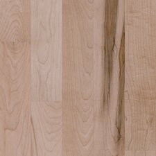 "Nantucket 2-1/4"" Solid Maple Plank Flooring in Prospect Hill"