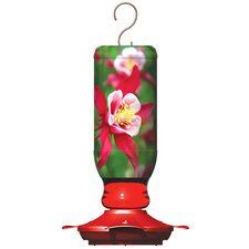 Ready To Use Hummingbird Feeder