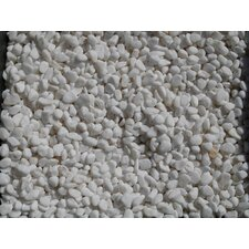 <strong>Exotic Water Designs</strong> 5 Lbs Bean Pebbles