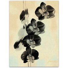 Modern Orchid Blush Panels III James Burghardt Wall Art on Canvas