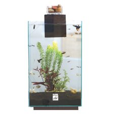 6.6 Gallon Fluval Chi Aquarium Kit