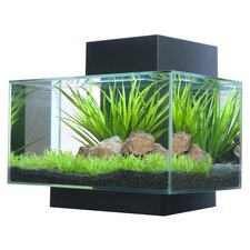 6 Gallon Fluval Edge Aquarium Kit