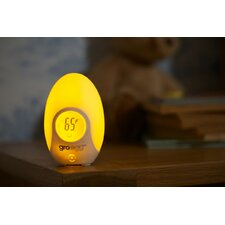 Egg Room Thermometer Night Light