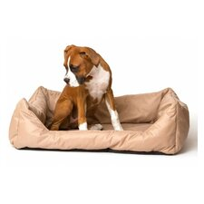 Dreams Are Made Here Dog Bed in Beige