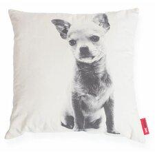 Expressive Chihuahua Dog Decorative Throw Pillow