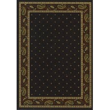 Innovation Onyx Paisley Area Rug