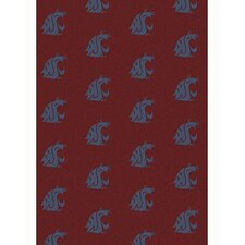 NCAA II Air Force Academy Falcons Novelty Rug