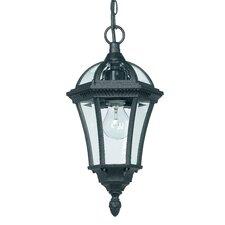 Herald 1 Light Hanging Lantern