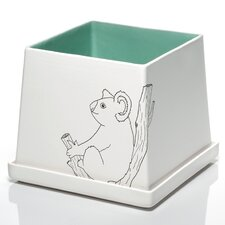 Tree Dwellers Koala Square Planter