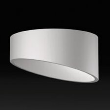 Domo Asymmetric Surface Flush Mount
