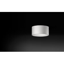 Citrus Domo Symmetric Surface Flush Mount
